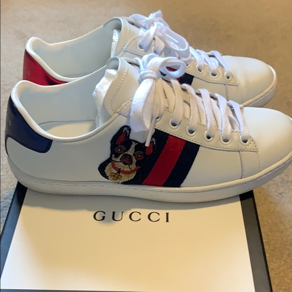 gucci cat and dog sneakers off 59